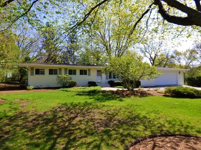 Barrington Single Family Home For Sale: 217 Roslyn Road