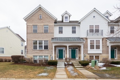 Hanover Park Condo/Townhouse For Sale: 932 Violet Drive