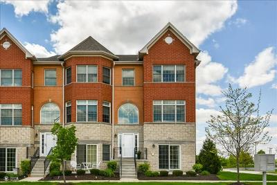 Orland Park Condo/Townhouse For Sale: 17926 Fountain Circle