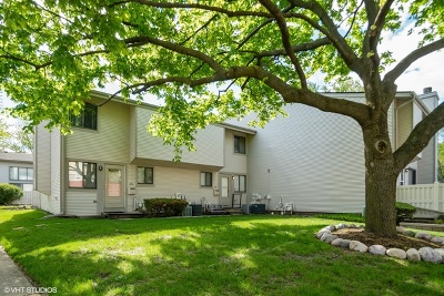 Schaumburg Condo/Townhouse For Sale: 511 Verde Drive