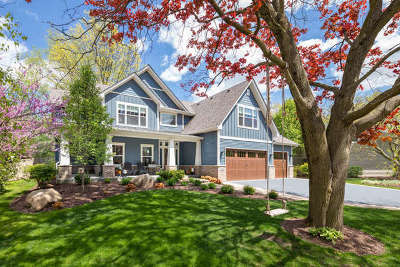 Naperville Single Family Home For Sale: 533 East Hillside Road