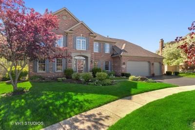 Geneva Single Family Home For Sale: 39w098 Fryendall Court