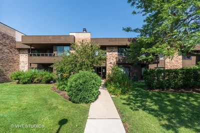 Palatine Condo/Townhouse For Sale: 1365 North Sterling Avenue #212