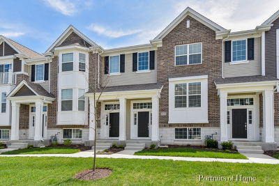Naperville Condo/Townhouse For Sale: 2933 Madison Drive
