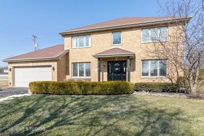 Tinley Park Single Family Home New: 6904 175th Street
