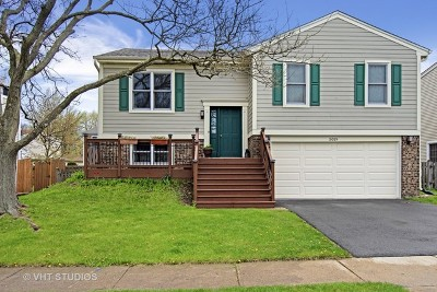 Hoffman Estates Single Family Home For Sale: 5019 Chambers Drive