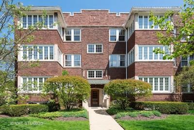 Evanston Condo/Townhouse New: 813 Ridge Avenue #1