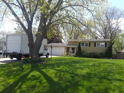 Palatine Single Family Home For Sale: 617 West Kenilworth Avenue West