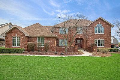 Homer Glen Single Family Home Price Change: 13527 South Potawatomi Trail