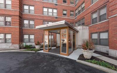 Evanston Condo/Townhouse New: 1585 Ridge Avenue #409