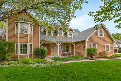 Naperville Single Family Home New: 1903 Morgan Circle