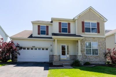 Hoffman Estates Single Family Home For Sale: 2105 Colchester Avenue