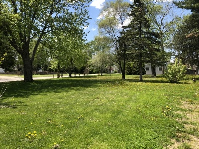 Kane County Residential Lots & Land For Sale: 609 North Prairie Street
