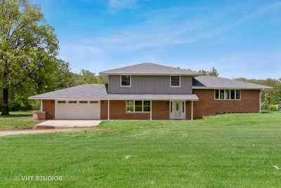 Homer Glen Single Family Home New: 12132 West 167th Street