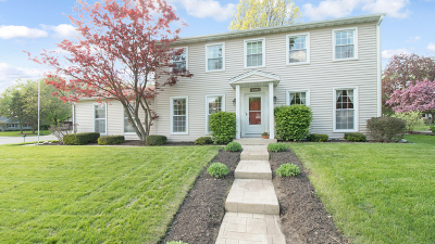 Naperville Single Family Home Contingent: 1029 Whirlaway Avenue