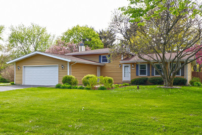 Naperville Single Family Home New: 10s442 Curtis Lane
