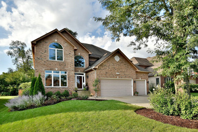 Willowbrook IL Single Family Home New: $739,900