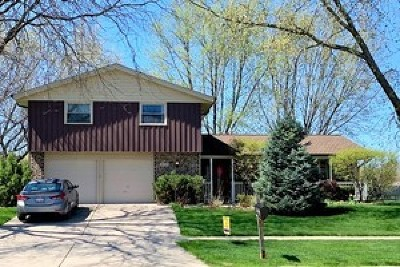 Schaumburg Single Family Home Contingent: 816 South Salem Drive