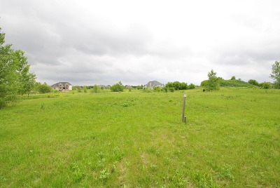Kane County Residential Lots & Land For Sale: 1885 Hunters Ridge Lane