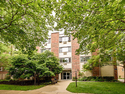Evanston Condo/Townhouse New: 1234 Elmwood Avenue #2F