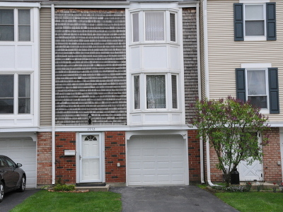 Hoffman Estates Condo/Townhouse For Sale: 1952 Holbrook Lane