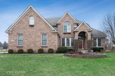 Naperville Single Family Home New: 3423 Sunnyside Court
