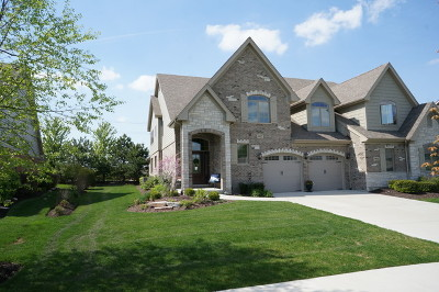 Frankfort Single Family Home New: 9922 Folkers Drive