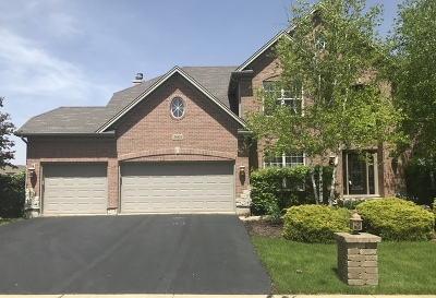 Plainfield Single Family Home For Sale: 26828 Ashgate Crossing