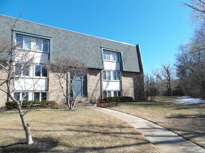Glenview Rental For Rent: 1951 Ammer Ridge Court #301