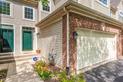 Hoffman Estates Condo/Townhouse For Sale: 6119 Halloran Lane #41-3