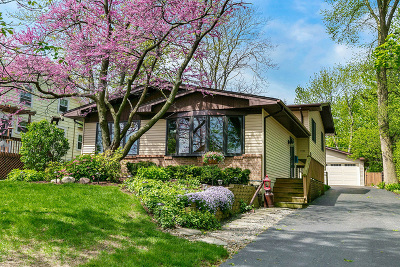 Downers Grove Single Family Home For Sale: 5532 Washington Street