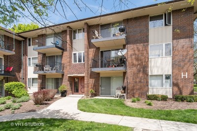 Naperville Condo/Townhouse New: 5s070 Pebblewood Lane #H3