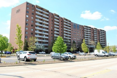 Schaumburg Condo/Townhouse For Sale: 21 Kristin Drive #310