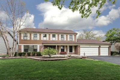 Hoffman Estates Single Family Home For Sale: 3790 Anjou Lane