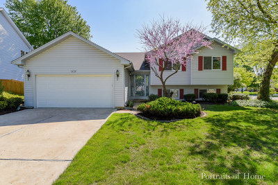Bolingbrook Single Family Home New: 100 North Vincent Drive