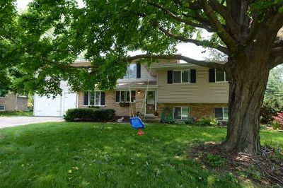 Lisle Single Family Home For Sale: 6045 Lenox Court