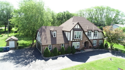 Orland Park Single Family Home For Sale: 15845 115th Court
