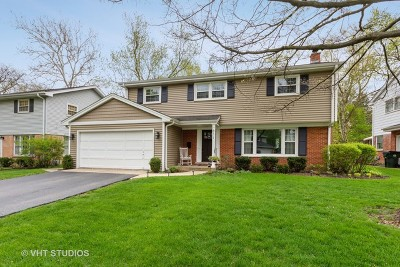 Arlington Heights Single Family Home For Sale: 811 East Talbot Street