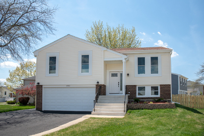 Hoffman Estates Single Family Home For Sale: 4940 Lichfield Drive