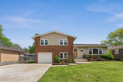 Mount Prospect Single Family Home For Sale: 1309 South Busse Road