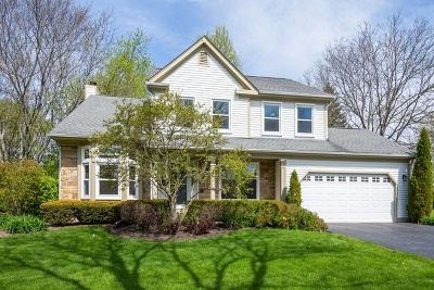 Buffalo Grove Single Family Home For Sale: 232 Stanton Court West