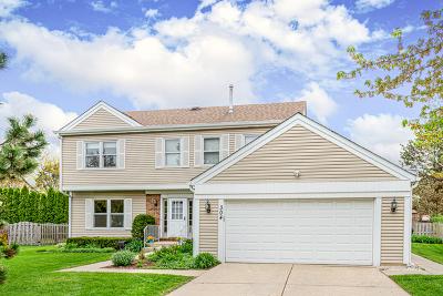 Buffalo Grove Single Family Home For Sale: 304 Chateau Drive