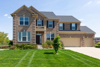 Naperville Single Family Home New: 4336 Littleleaf Road