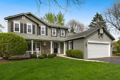 Naperville Single Family Home New: 205 Rivanna Court