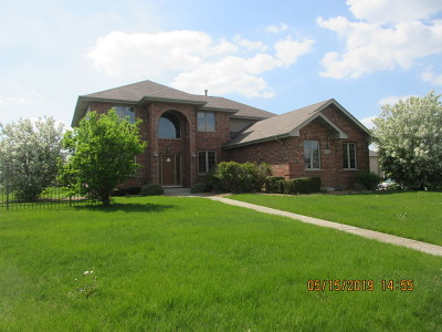 Mokena Single Family Home For Sale: 20944 Mayfair Drive