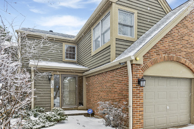 Naperville Condo/Townhouse New: 1600 Aberdeen Court