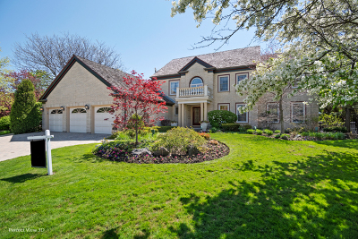 Glenview Single Family Home For Sale: 2304 Indian Ridge Drive