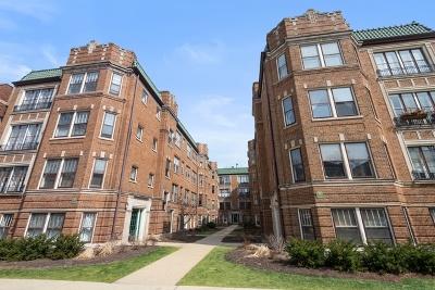 Evanston Condo/Townhouse New: 719 Hinman Avenue #3E
