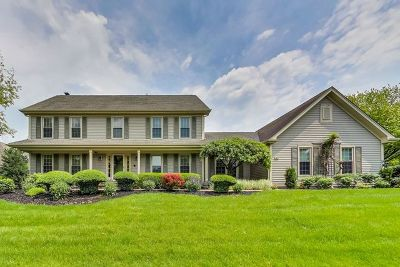 Vernon Hills Single Family Home For Sale: 381 South Old Creek Road