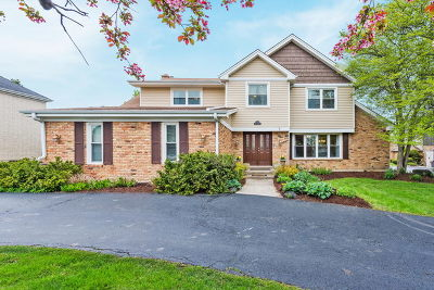 Oak Brook Single Family Home New: 2s651 Avenue Latour